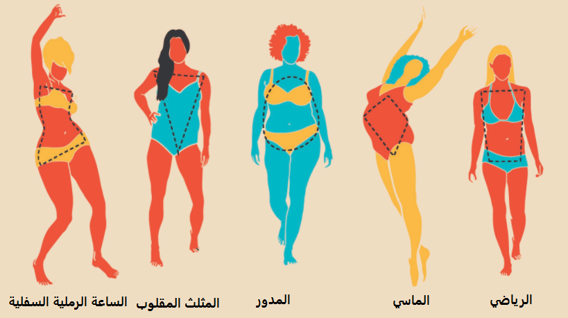 أنواع الأجسام و اشكاله